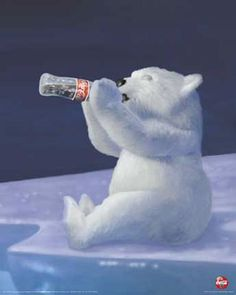 Classic Holiday Coke Ad Coke Polar Bear   ........  #coke ....... #coca-cola