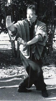 Adam Hsu's Bagua Zhang
