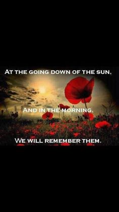 Anzac lest we forget ♥ Anzac Day Quotes, Flanders Poppy, Flanders Field Poppies, Poppy Images, Remembrance Day Poppy, Remembrance Day Photos, Very Nice Pic, We Are The World, Jolie Photo