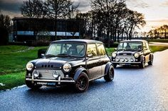 Woww some good minis Mini Clubman, Mini Coopers, Mini Countryman, Mini Cooper Classic, Classic Mini, Classic Cars, Lamborghini, Ferrari, Bmw