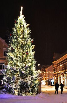 Christmas in Kristiansand, Norway  Posting this for Stephanie and Jeff C. Merry Christmas friends!