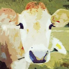 CC238 #canvasandcanvas #animal #art #cow #handpainted #canvasart