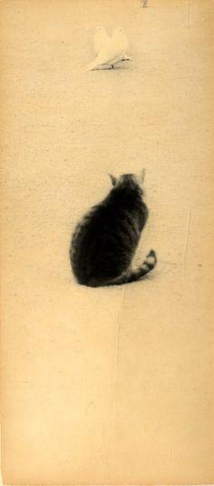 unknown  Masao Yamamoto