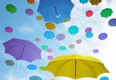 http://www.normandie-actu.fr/files/2012/11/Parapluies.JPG