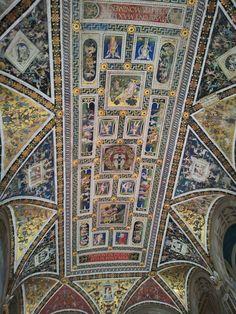 Musei senesi, soffitto