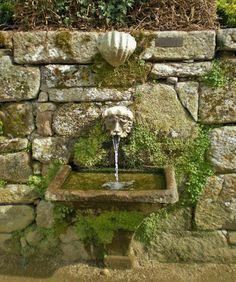 Stone fountian Xardíns históricos de Castrelos Garden Features, Water Features, Spanish Garden, Ponds, Cacti, Showers, Fountain, Garden Ideas, Landscaping