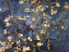 Shop for framed Blossoming Almond Tree, Saint-Remy, by Vincent Van Gogh. Painting Prints, Wall Art Prints, Fine Art Prints, Van Gogh Almond Blossom, Van Gogh Art, Van Gogh Paintings, Tree Canvas, Blue Art, Art Plastique