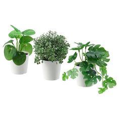 Fake Potted Plants, Fake Plants Decor, Faux Plants, Water Plants, Green Plants, Plant Decor, Indoor Plants, Indoor Outdoor, Ikea Fake Plants