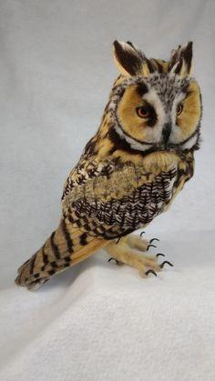 Kiyoshi Mino // Needle Felted Animals: Long-eared owl