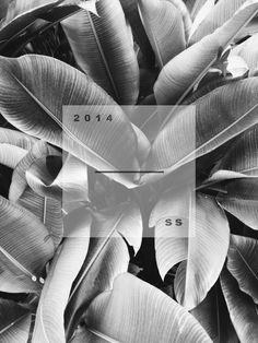 ✖ invite Inspiration for cover art