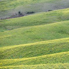 (176 km), 53 km di strade sterrate divise in 9 settori. Una gara immersa nelle cosiddette Crete Senesi, la zona a sud-est della città diSiena, che include i territori comunali diAsciano,Buonconvento,Monteroni d'Arbia,Rapolano Terme,San Giovanni d'AssoeTrequanda, tutti inprovincia di Siena. GUARDA LA GALLERIA