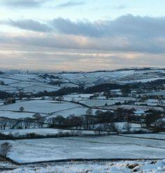 alice fox winter landscape