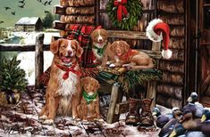 """New for 2013! Nova Scotia Duck Toller Retriever Christmas Holiday Cards are 8 1/2"""" x 5 1/2"""" and come in packages of 12 cards. One design per package. All designs include envelopes, your personal message, and choice of greeting.Select the inside greeting of your choice from the menu below.Add your custom personal message to the Comments box during checkout."""