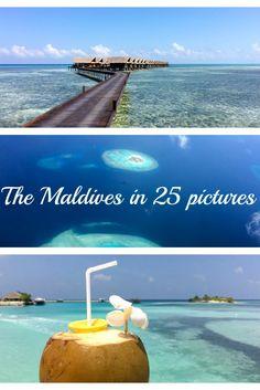 The Maldives in 25 pictures / Die Malediven in 25 Bildern #Maldives #Malediven #travel #Urlaub #Reise #Flitterwochen #honeymoon