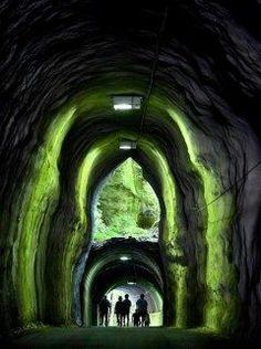 千葉県市原市の養老渓谷に出口が二階建てに見えるトンネルがあります 小湊鉄道の養老渓谷駅から養老川へ向かうハイキングコースの途中にある全長メートルのトンネルです かつては普通のトンネルで出口は上が使われていたが途中で深く掘削され上の出口が埋め戻されずに残ったためこのようなトンネルができたんだそうです 皆さんもぜひ一度訪れてみてはいかがでしょうか tags[千葉県]