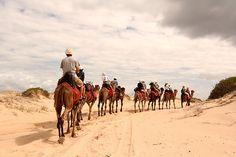 Anna bay desert, Australia #desert