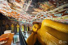 Roteiro de 16 dias no Sri Lanka (a minha viagem)   Alma de Viajante Sri Lanka, Painting, Art, The Journey, Wayfarer, Travel, Art Background, Painting Art, Kunst