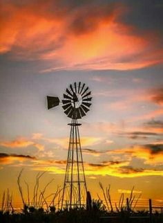 Windmill quote when the winds of change blow do you build a wall or a windmill? Proverb added the quote silhouette of windmill and sunset quotes to live by romance relationship quote Jane Fox Farm Windmill, Windmill Art, Old Windmills, Holland Windmills, Wind Of Change, Country Scenes, Le Far West, Water Tower, Old Barns