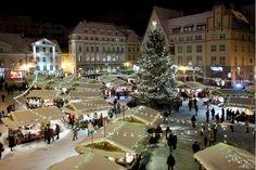 Tallinnan joulumarkkinat <3