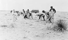 FILE - In this 1935 file photo, workers plant a shelterbelt strip of trees on the farm of Dr. A.H. Bungardt, west of Cordell, Okla., during reclamation following the Dust Bowl. The Dust Bowl was manmade, born of bad farming techniques across millions of acres in parts of Texas, Oklahoma, New Mexico, Colorado and Kansas. Now, even as bad as the drought is in some of those same states, soil conservation practices developed in the aftermath of the Dust Bowl have kept the nightmarish storms from…