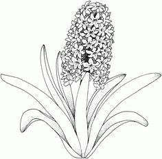 summer flowers printable coloring pages – Free Large Images Make your world more colorful with free printable coloring pages from italks. Our free coloring pages for adults and kids. Leaf Coloring Page, Abstract Coloring Pages, Flower Coloring Pages, Mandala Coloring Pages, Coloring Book Pages, Coloring Sheets, Coloring Pages For Grown Ups, Coloring Pages For Kids, Summer Flowers
