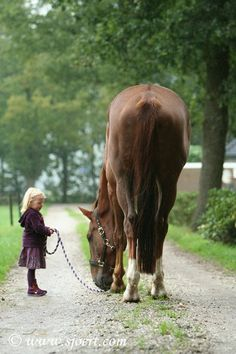 These pictures always makes my heart melt... why? Because it shows how horses are careful around children! And it shows how little girls always love their ponies;)