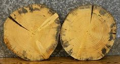 $49.95  - 2 Salvaged Live Edge Round Cut Pine Rustic Centerpiece Slabs T 1 116 D 16 14  69046925 >>> See this great product. (This is an affiliate link) #BuildingSupplies