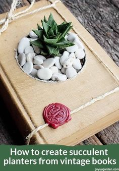 How To Create Succulent Planters From Vintage Books, Succulents are fun to craft with & easy to grow. Here's how to create succulent planters from vintage books. This step by step DIY guides you through. #succulents #diyproject #craft #repurpose