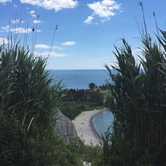 When you need to get away from the weekly startup grind... The #bluffs are always just a short drive or bike ride away   @_annazissou  #GTA #TOWRcorridor #scarborough #buffersbeach #startuphereTO #weekend #summer16 #summervibes #beachdays #summer #TorontoDayTrip #staycation #torontolife