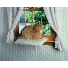 "The Thermo Sash IIIe incorporates dual-pane, Insulated Low ""E"" glass with the award-winning ""Endura Flap"" for a superior sash window pet door solution. Cat Window Perch, Cat Towers, Pet Door, Sash Windows, Pet Life, Outdoor Furniture, Outdoor Decor, Cat Love, Your Pet"