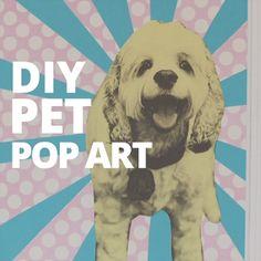 DIY Pet Pop Art!
