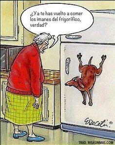 Te has vuelto a comer los imanes del frigorífico.