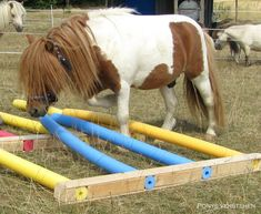 Upcycling rund um's Pferd