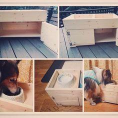 木工教室作品*アルファ君の餌台です。  minneでオーダーも受付しております😃  犬種によってサイズ変更も可能です!  また 木工教室でご自分で制作も可能です!  ご自宅のワンチャン🐶のために手作りしてみてはいかがですか?  #愛犬 #犬 #エサ台 #餌用 #餌 #猫 #愛猫 #ペット #お水トレー #トレー #DIY #自作  #wood  #足跡 #dog #cat #食事 #ペット用品  #シェルティ  #オーダー可能 #オーダーメイド #木工教室 #教室 #習い事 #相模原 #緑区 #津久井 #minne #ミンネ