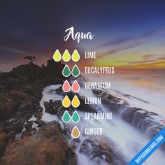 Essential Oils Guide, Essential Oil Uses, Doterra Essential Oils, Young Living Essential Oils, Savon Soap, Essential Oil Diffuser Blends, Diffuser Recipes, Aromatherapy Oils, Perfume