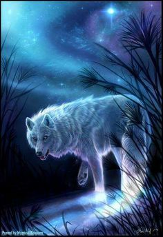 the wolf...spirit guide