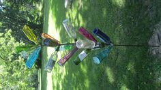 Wine/bottle tree   Will have one for my landscape this year!