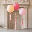 Peach Blossom Tassel Tail Balloons