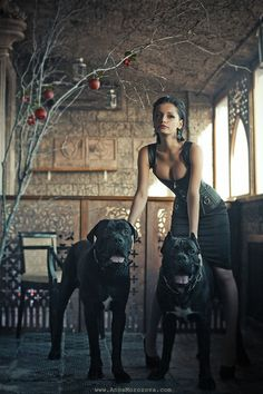Nice Cane Corso, my favorite breed. Cão Cane Corso, Chien Cane Corso, Sexy Fotografie, Cane Corso Italian Mastiff, Italian Cane Corso, Animals And Pets, Cute Animals, Tier Fotos, Girl And Dog