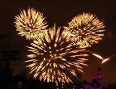 Happy new year Mickey!