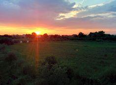 field sunset back yard