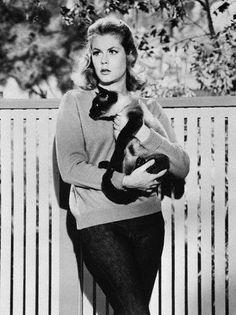 Elizabeth #Montgomery #famous #cat #celebirity