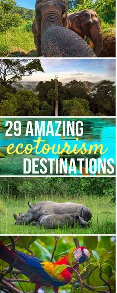 Want to add some of the world's most beautiful destinations to your bucket list and do good at the same time? These 29 green ecotourism destinations will inspire you to travel responsibly and mindfully, keeping the world beautiful for future generations