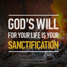 What Is God's Will for Your Life? - Devotional   James MacDonald Bible Teaching   Walk in the Word
