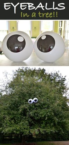 Eyes for yard. Maybe balloons would work... or something from the dollar store.