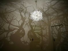 'Forms in Nature' Tree Shadow Light by Hilden & Diaz | Inthralld
