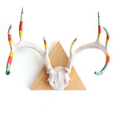 Large 8 Point Antler...I am not big on the whole antler thing...but this one I would hang in the house!