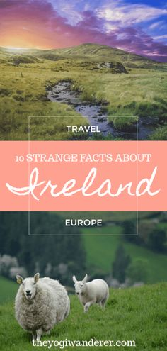 10 interesting facts about Ireland you probably didn't know Pro Ireland travel tips to help you plan your vacation in the Emerald Isle. Packing List For Travel, Europe Travel Tips, European Travel, Travel Advice, Travel Destinations, Travel Ideas, Travel Hacks, Travelling Europe, Usa Travel