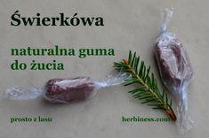 Cała Polska...żuje gumę - guma świerkówa Healthy Beauty, Preserves, Herbalism, Diy And Crafts, Food And Drink, Herbs, Vegan, Survival, Kitchen