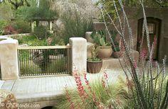 desert garden design - Google Search